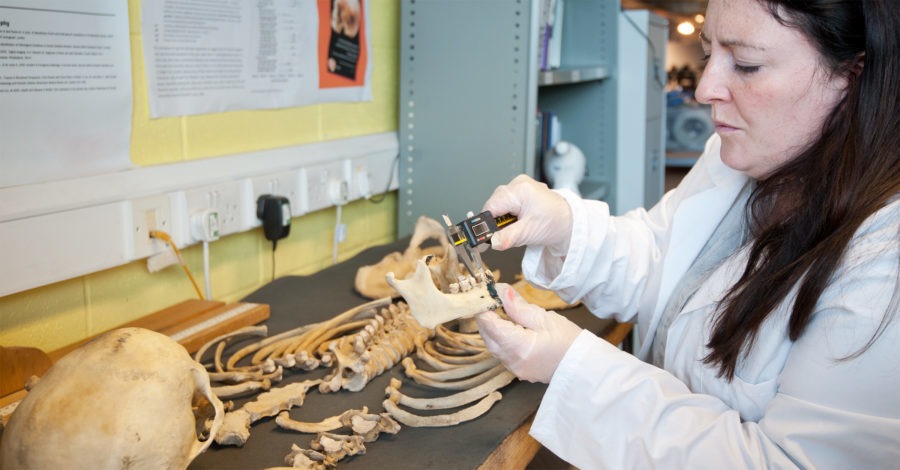 Picture of skeleton being examined